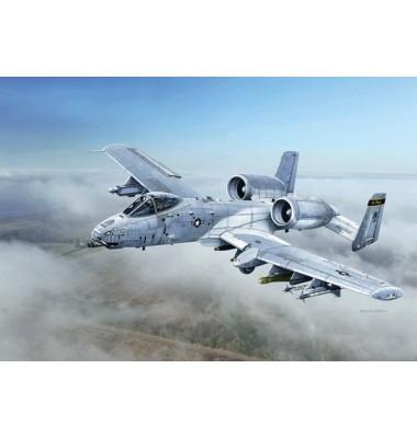 "A-10C ""Blacksnakes"" 1/48 ( 1/48 code 2725 )"
