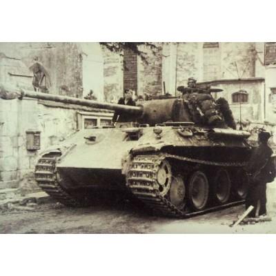 Panther Ausf A German Standard Tank ( 1/35 code 270 )
