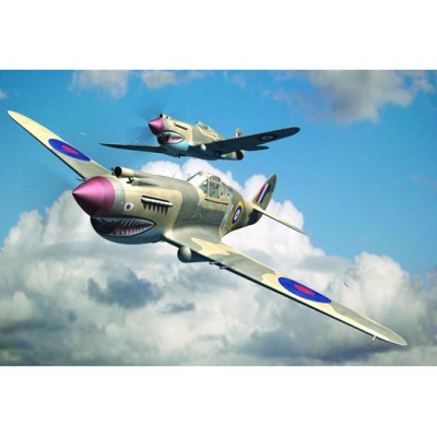 Curtiss P-40B Warhawk ( 1/48 code 02807 )